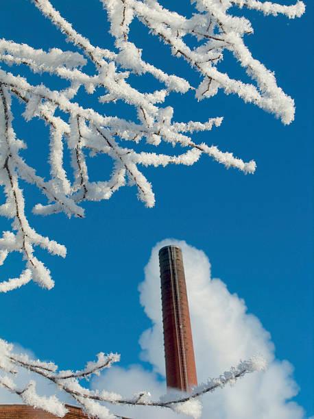 snowy Baum in der Nähe von factory – Foto
