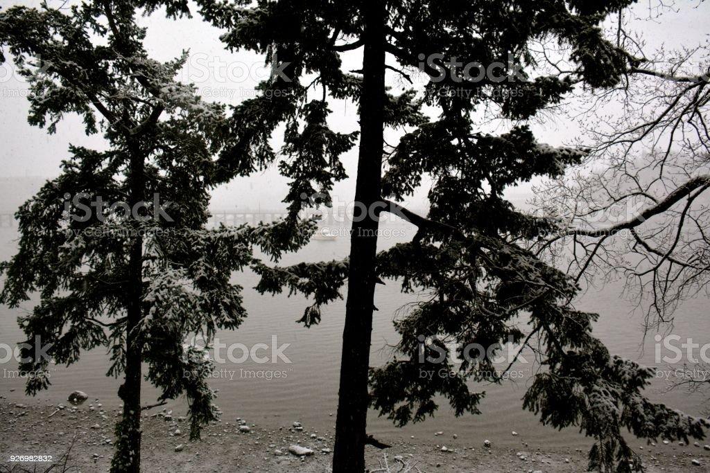 Snowy Victoria stock photo