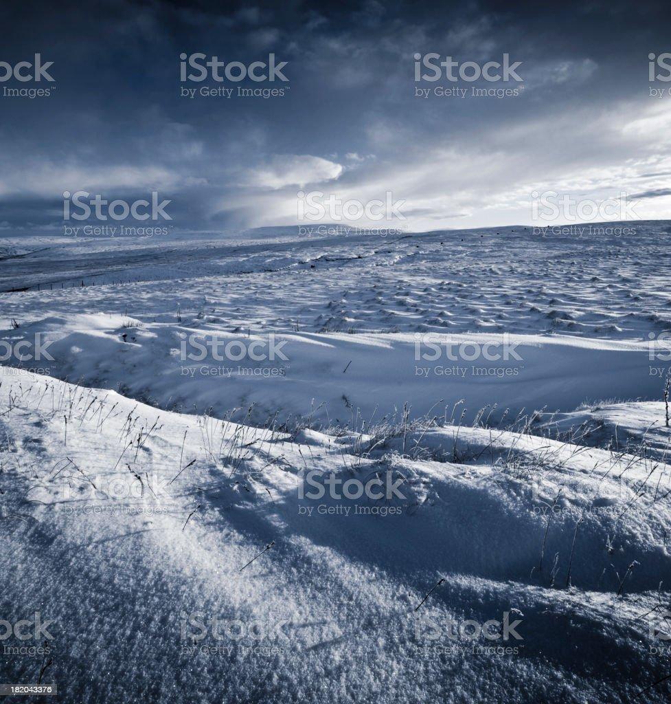 Snowy Wilderness royalty-free stock photo