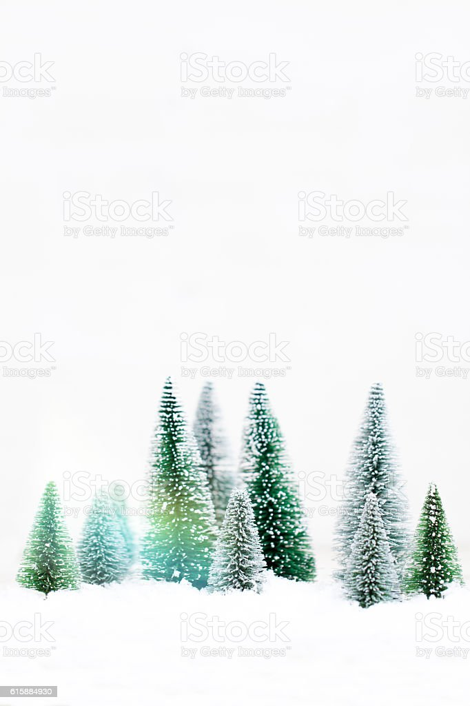 Snowy Winter Forest - Christmas Card – Foto