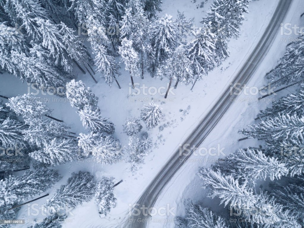 Snowy winter forest with bird's eye view stock photo
