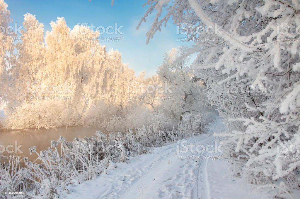Photo Libre De Droit De Hiver Neigeux Paysage Dhiver Glacial