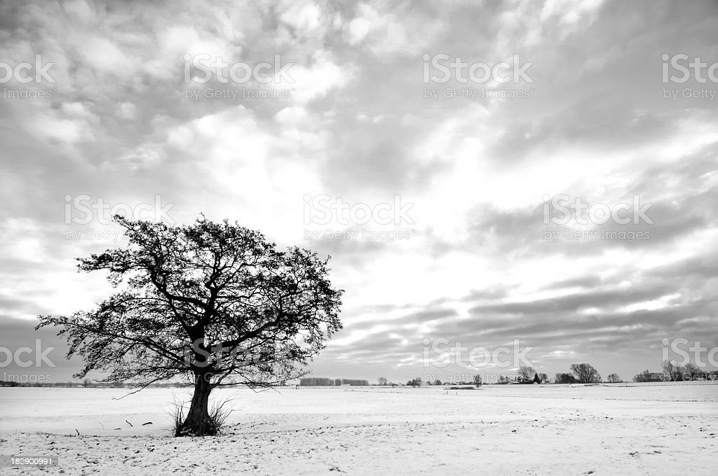Snowy winter landscape in Black and White stock photo