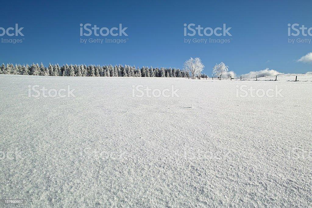 Verschneite Winterlandschaft in Black Forest – Foto