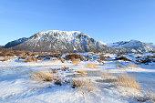 vector alaska range mountains lake with raindeer