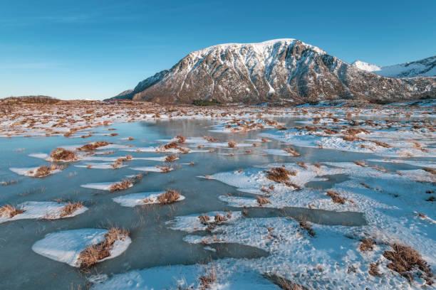 Snowy winter landscape on Austvagoya island in the lofoten stock photo