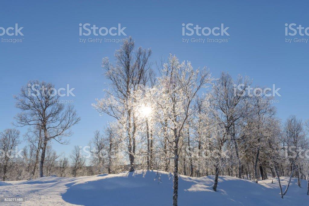 Snowy winter landscape on the island of Senja, Norway stock photo