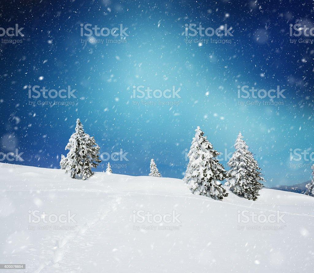 Snowy zimowy krajobraz zbiór zdjęć royalty-free