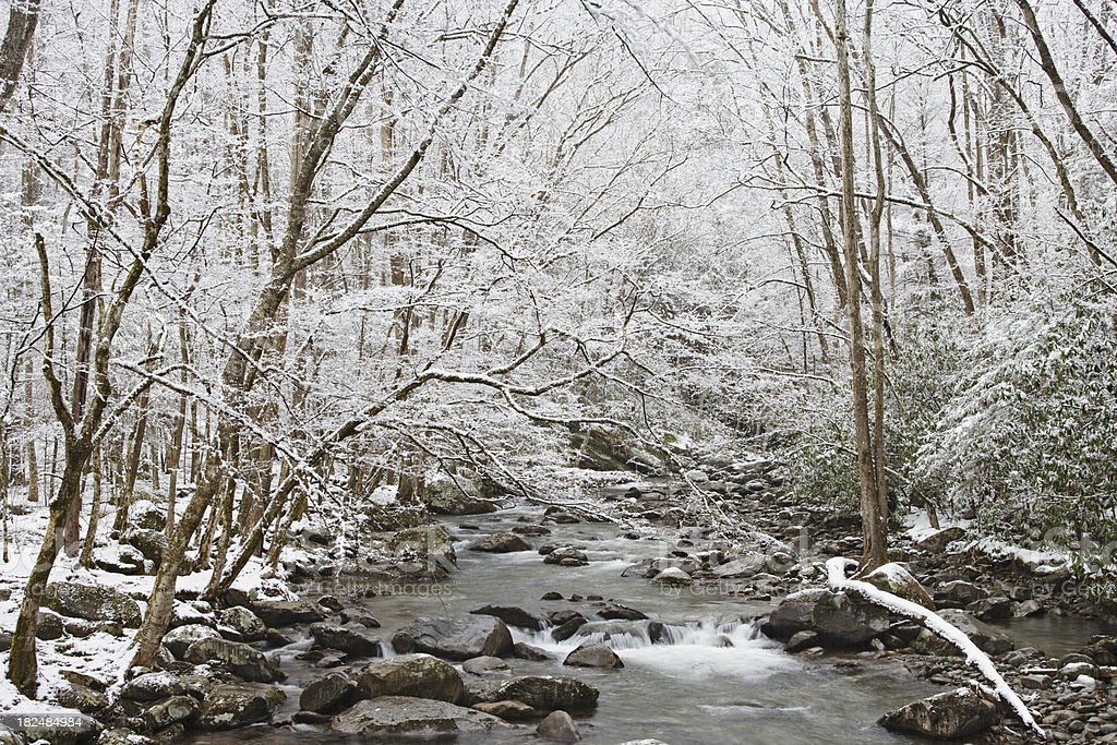 Snowy winter stream in the Smoky Mountains royalty-free stock photo
