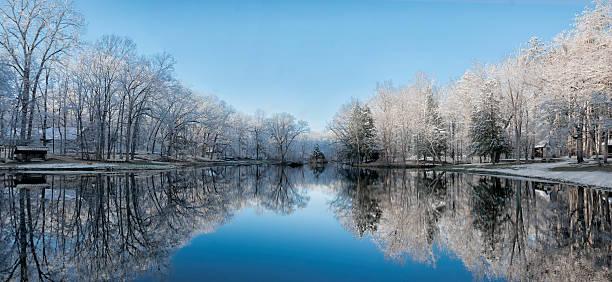 Snowy Winter Tree Lake Reflections stock photo