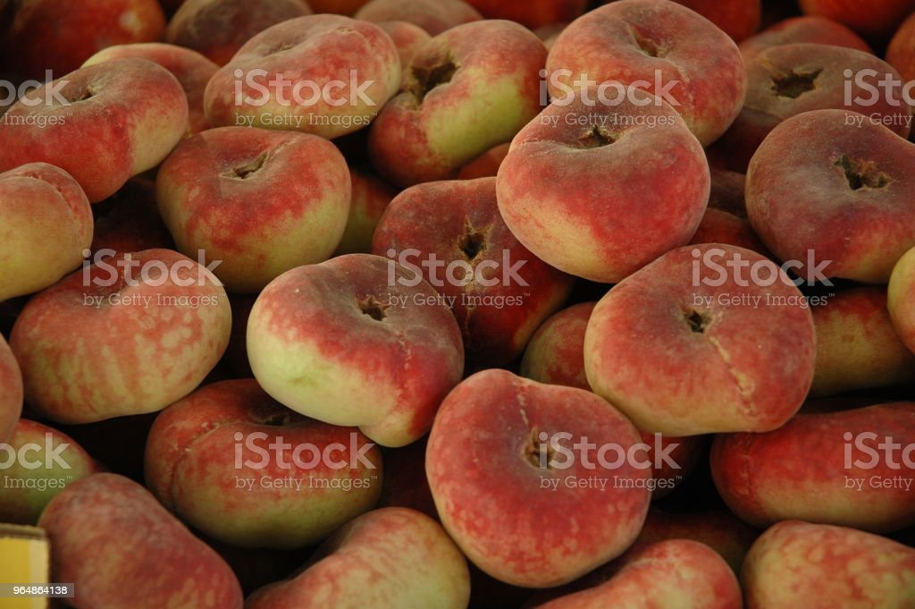 Tabacchiere royalty-free stock photo