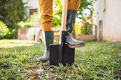 istock So let's start gardening! 1166401369