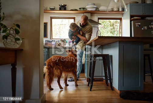 Shot of a young man spending quality time with his adorable child and dog in the kitchen at home