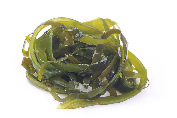 empapadas wakame algas - algas fondo blanco fotografías e imágenes de stock