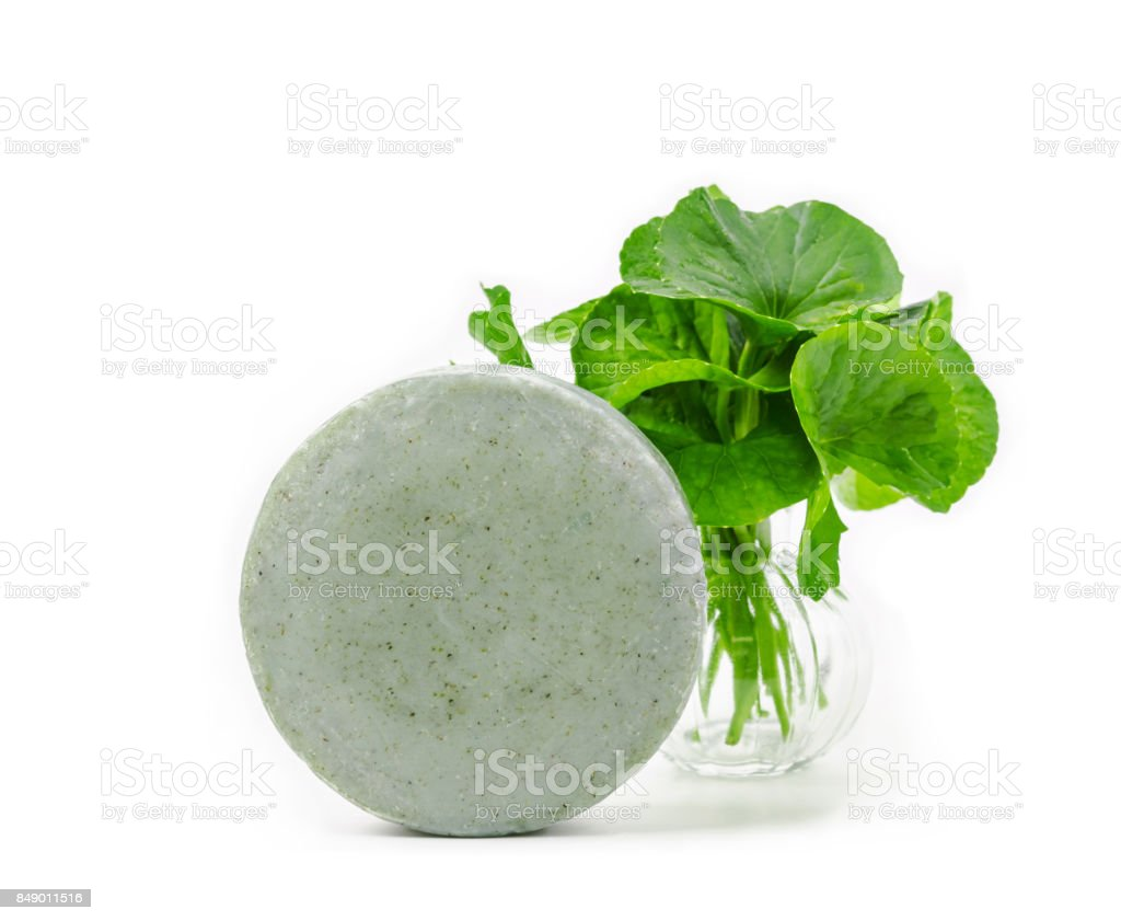 Soap centella asiatice with fresh green leaf stock photo