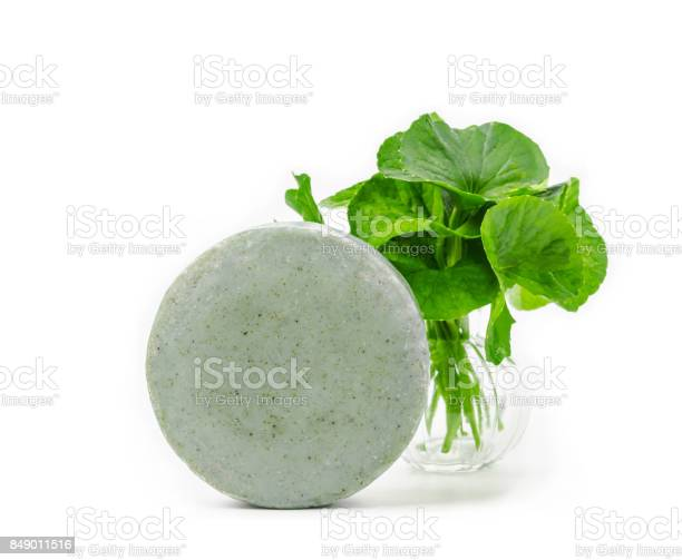 Soap centella asiatice with fresh green leaf