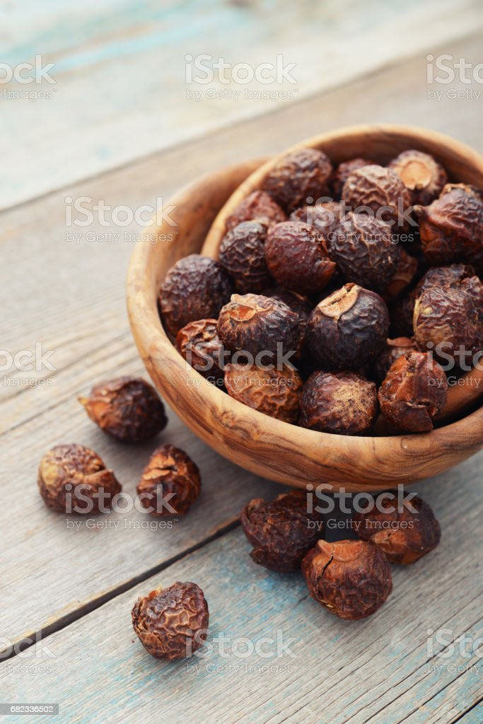 Soap nuts royalty free stockfoto