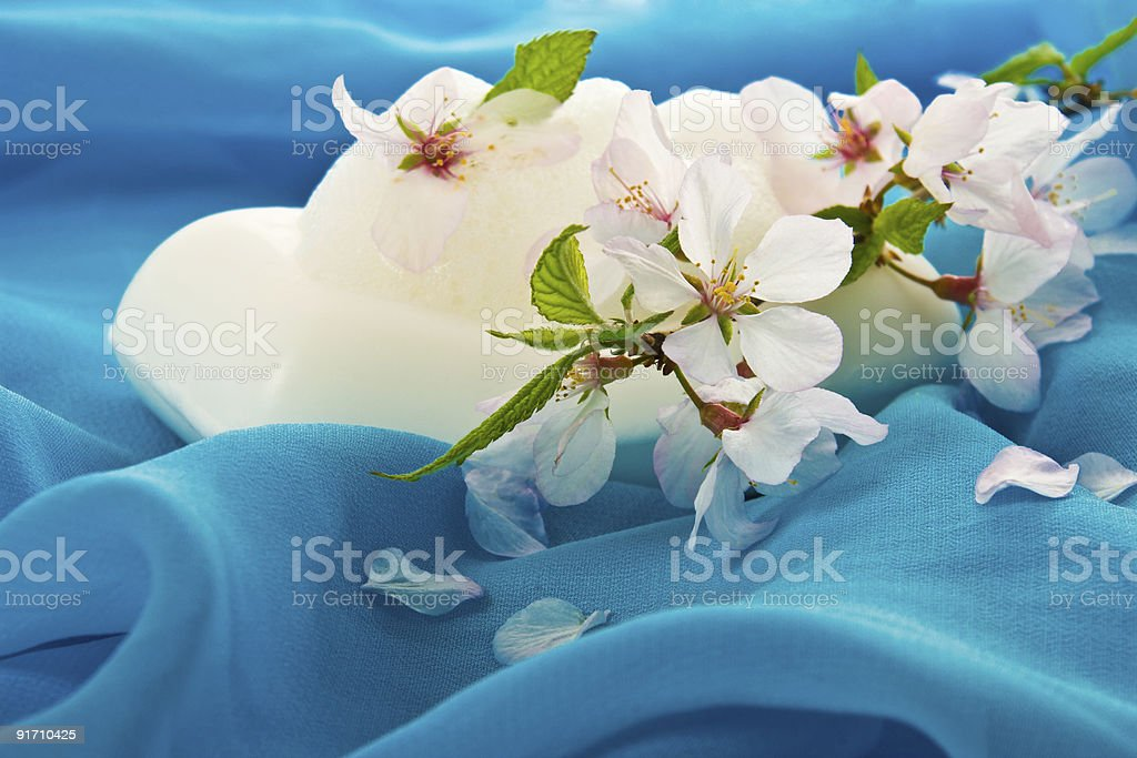 Soap with foam royalty-free stock photo