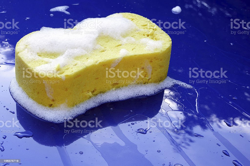 Soapy sponge on a bright blue car hood stock photo