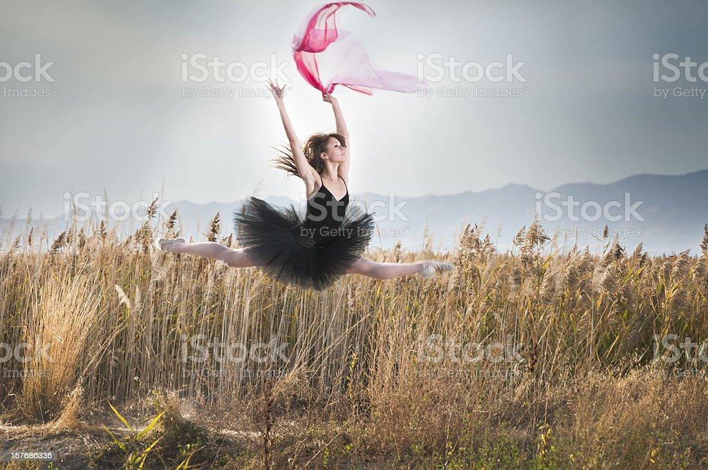 Soaring Ballerina royalty-free stock photo