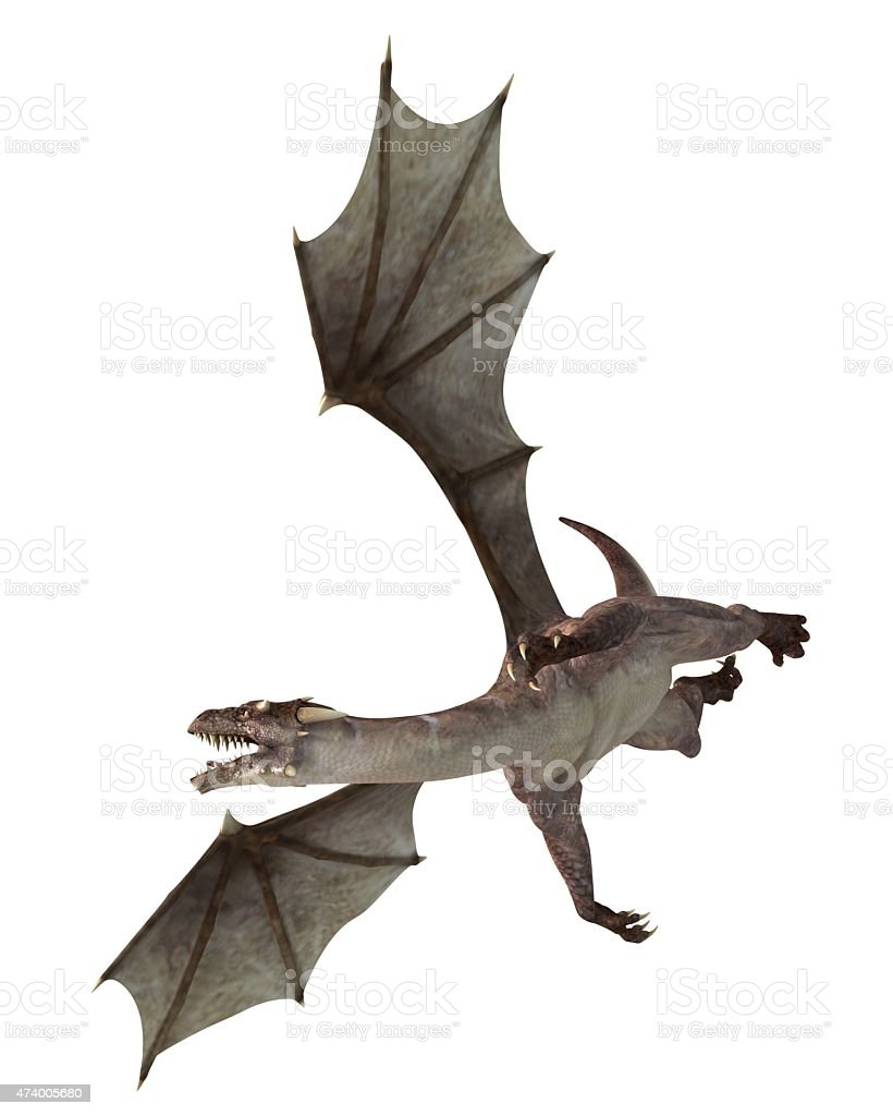 Soaring Dragon stock photo