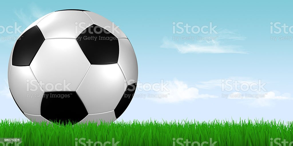 soccer ball in grass with blue sky royalty-free stock photo