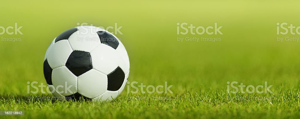 Soccer Ball on Grass Pitch royalty-free stock photo