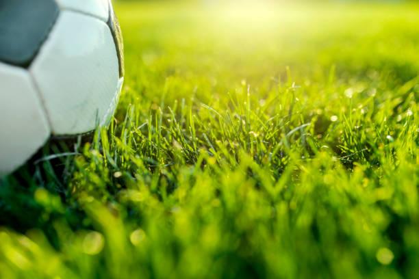 voetbal op groen gras - internationaal voetbalevenement stockfoto's en -beelden