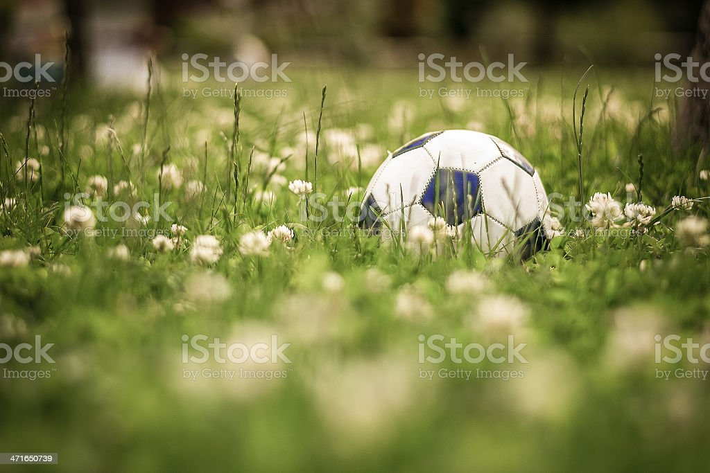 Pallone da calcio su prato verde con fiori royalty-free stock photo