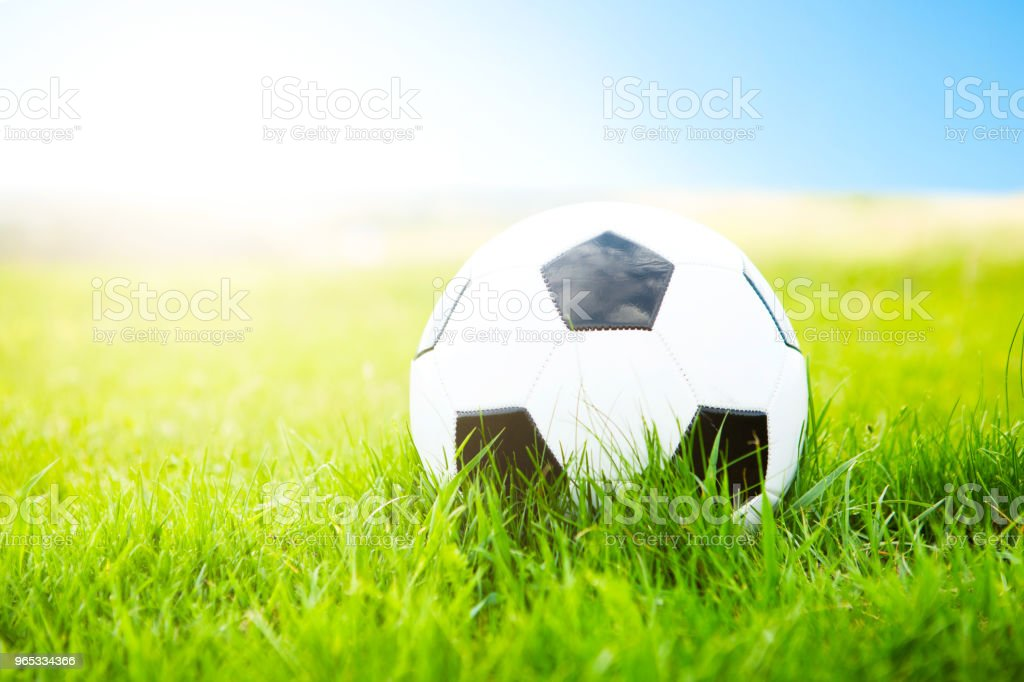 Soccer ball or football ball on green field royalty-free stock photo