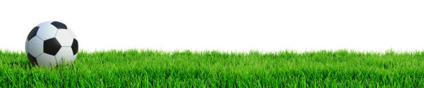 soccer concept - grass isolated foto e immagini stock
