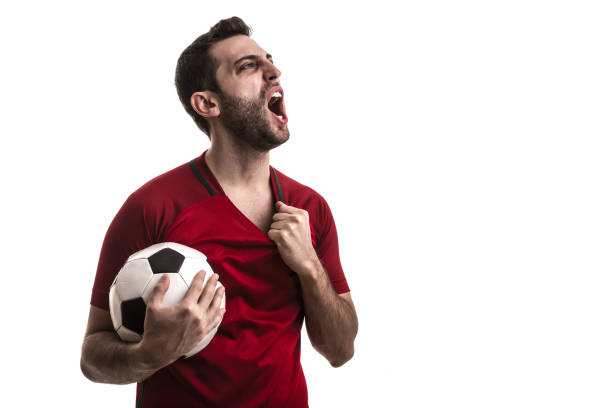 Soccer fan celebrating Soccer fan celebrating benelux stock pictures, royalty-free photos & images