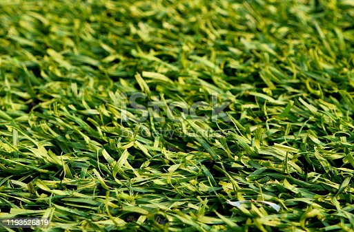 Artificial turf soccer