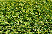 Artificial turf soccer