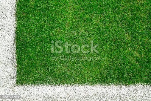186856750 istock photo Soccer field 183774564