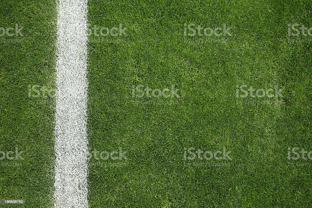 Soccer field Close-up of soccer field with single line Backgrounds Stock Photo