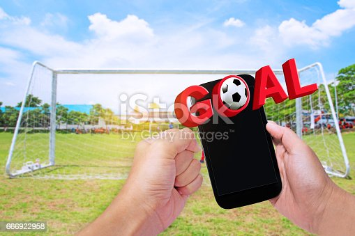 843298172 istock photo Soccer Football 666922958