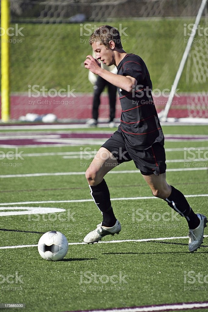 Soccer Goal in Site Profile royalty-free stock photo