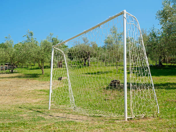 Soccer Goal meadow stock photo