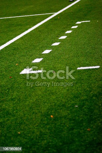 istock soccer Manager technical area 1067950924