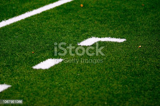 istock soccer Manager technical area 1067951086
