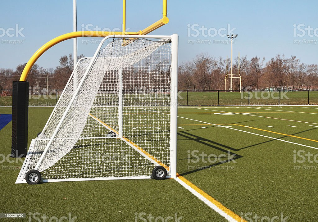 Soccer Net and Green Field royalty-free stock photo