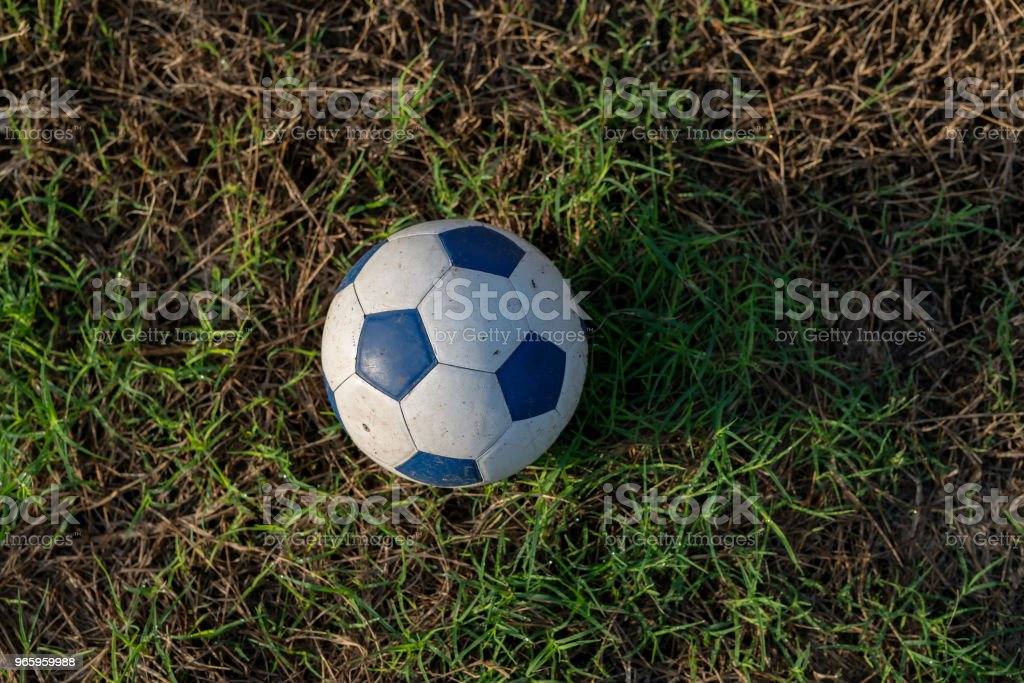 Soccer old ball on green field - Royalty-free Activity Stock Photo