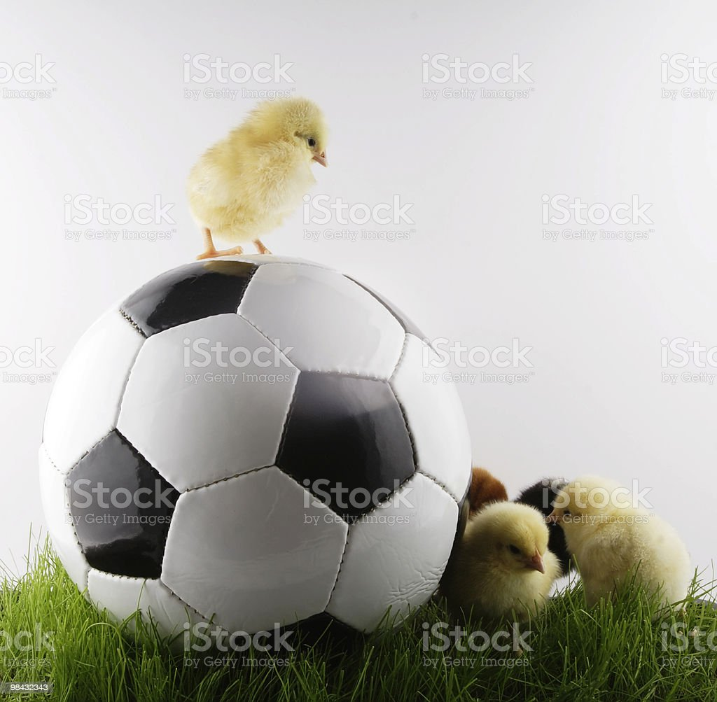 Calcio americano foto stock royalty-free