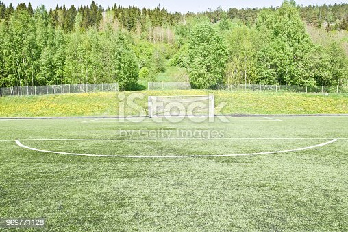 637297180 istock photo Soccer Pitch - Penalty Area 969771128