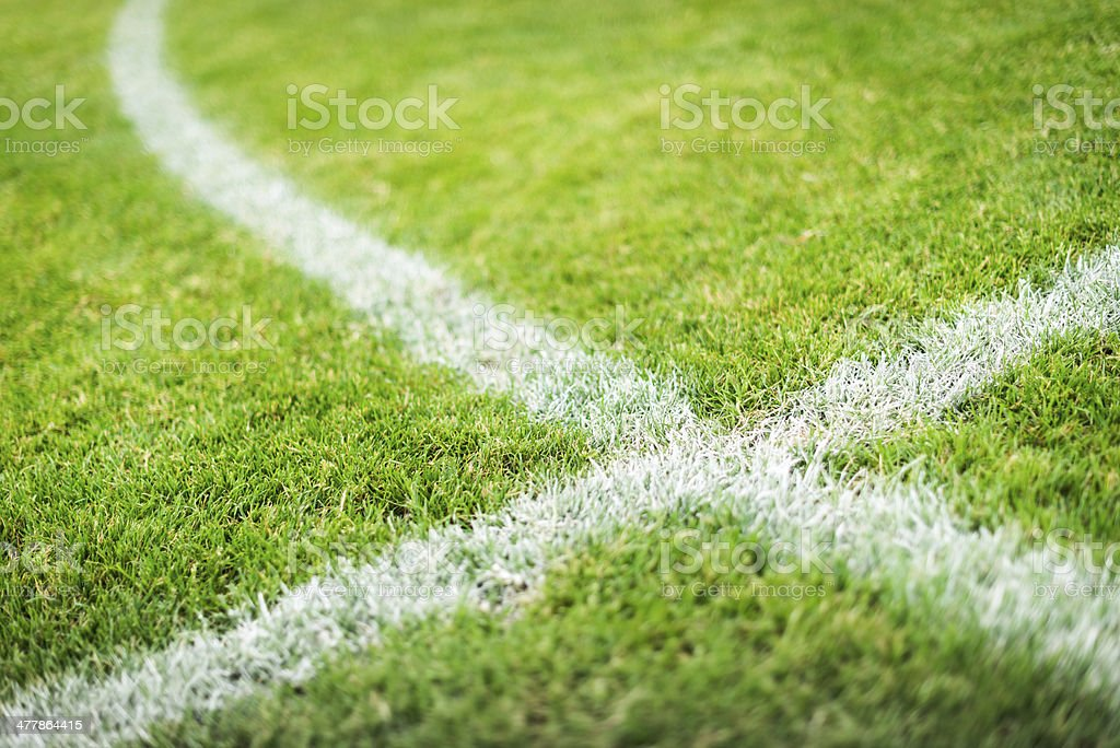 soccer playing field stock photo
