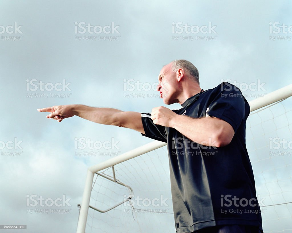 Soccer referee pointing royalty free stockfoto