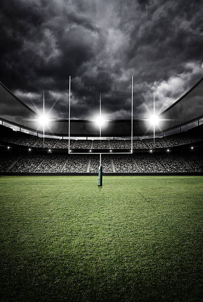 soccer stadium 3d rendering - rugby stock-fotos und bilder