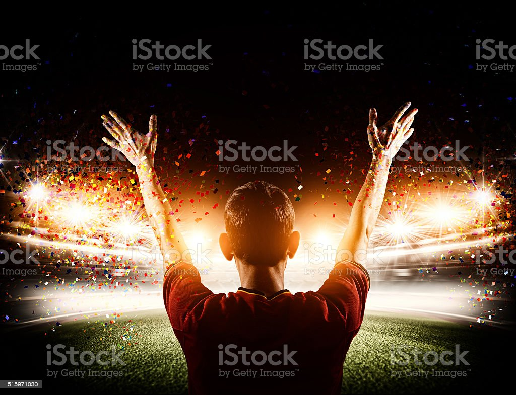 Soccer stadium with fan royalty-free stock photo