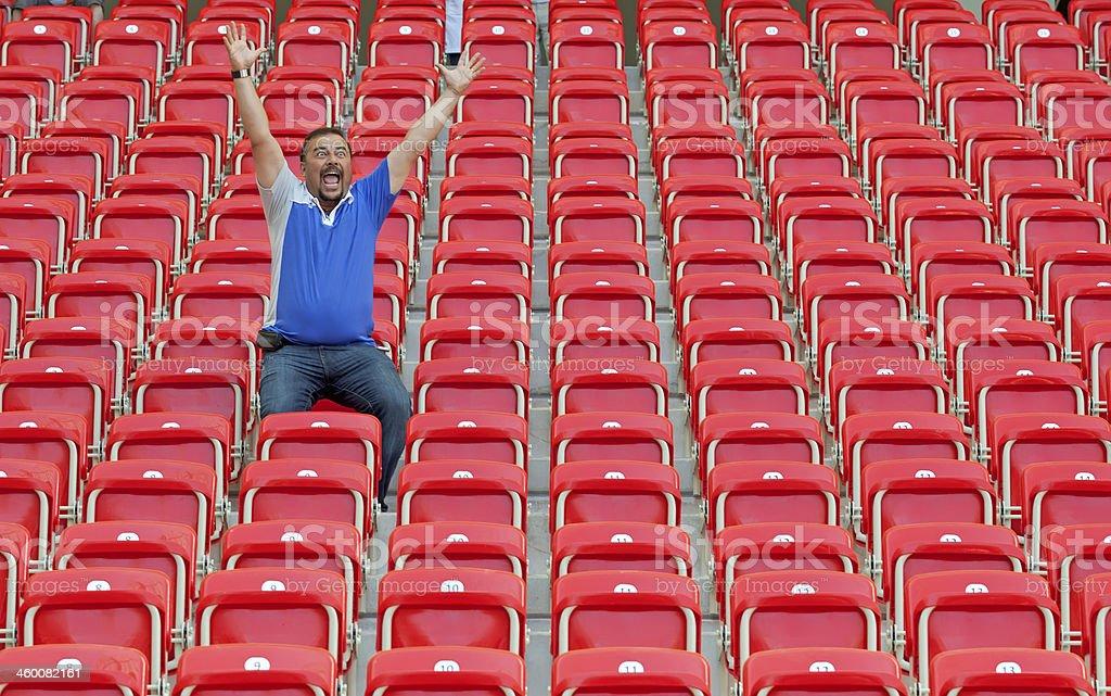 Soccer Supporter stock photo